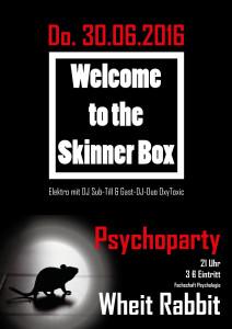 FS-Plakat-Psychparty-Skinnerbox-BDSM